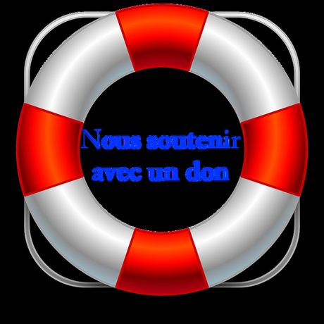 Macron : un désastre de dingue #29