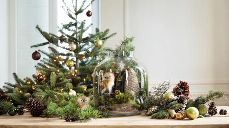Quelles Décorations pour Noel ?