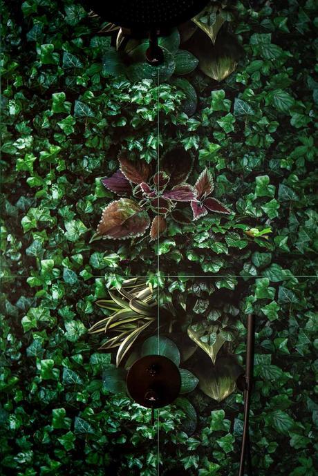 salle de bain douche urban jungle carrelage imprimé motif feuille tropical crédence murale