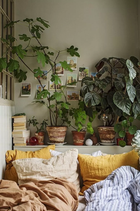 chambre draps lin plante verte mur vert kaki urban jungle