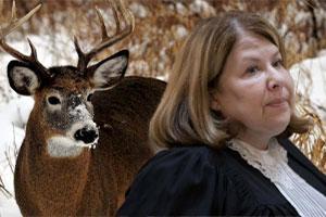 La Revanche de Bambi