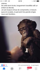 une artiste et  Le monde animal :  Sophie Mattei – de belles découvertes.