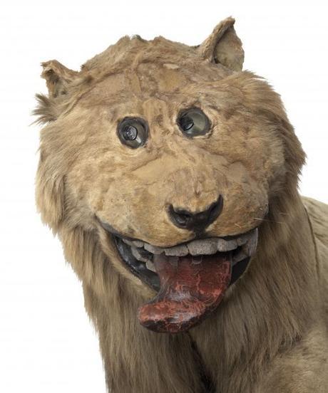 Le lion empaillé du château suédois de Gripsholm. Le taxidermiste ayant pratiqué la reconstitution de l'animal n'avait jamais vu de tel animal de son vivant.