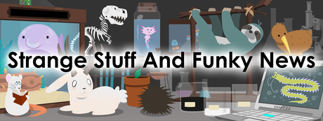 Strange Stuff and Funky Newsletter