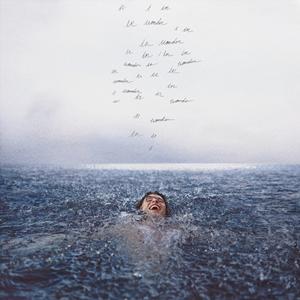 Sortie D'Album Culte: Wonder Shawn Mendes
