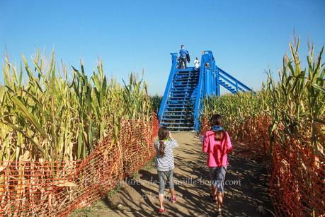 Corn Maze, le plus grand labyrinthe de maïs du monde est en Californie !
