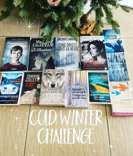 Cold Winter Challenge 2020, ma sélection!
