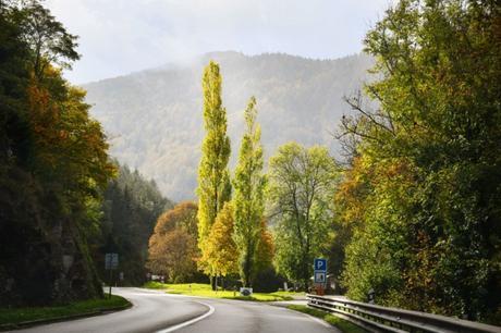 L'arrivée au col de Bussang par l'Alsace © French Moments