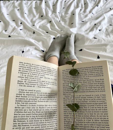 bouquiner au lit marque-page eucalyptus séché lit blanc