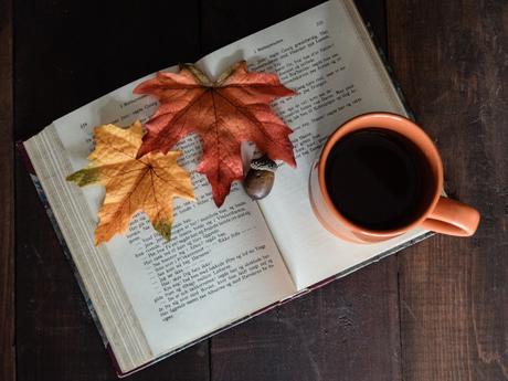 C'est lundi, que lisez-vous ? #6