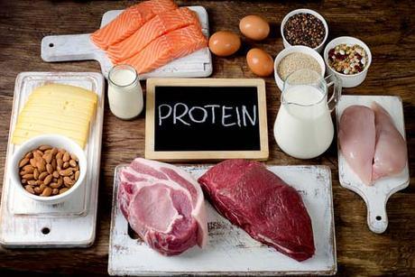 Les régimes alimentaires riches en protéines