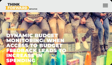 Think Forward Initiative - Dynamic Budget Monitoring