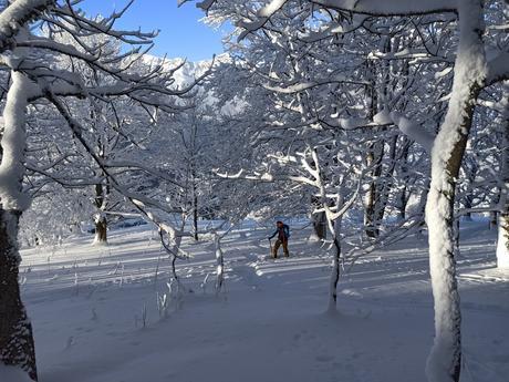 Test ski – Ogso Thor Neoteric UL