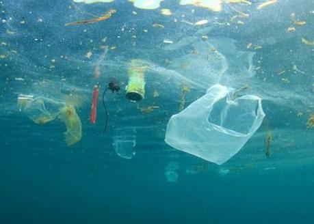 Nha Trang - pollution océanique