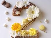 Number cake sans gluten toutes recettes chocolat, citron framboises