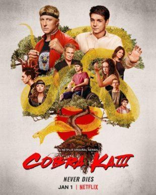 [Critique série] COBRA KAI – Saison 3