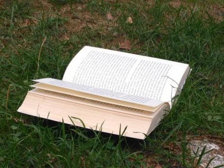 C'est lundi, que lisez-vous ? #7