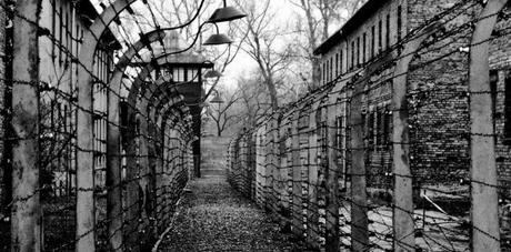Primo Levi, écrire après Auschwitz