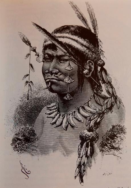 L'art de la plume en Amazonie