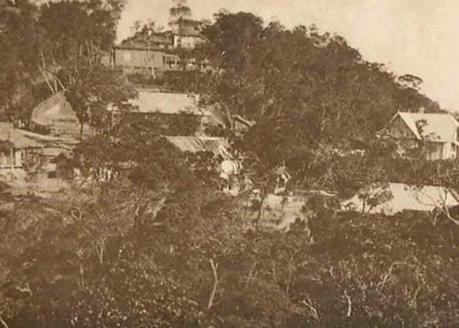 Bana-Hill-disneyland-5