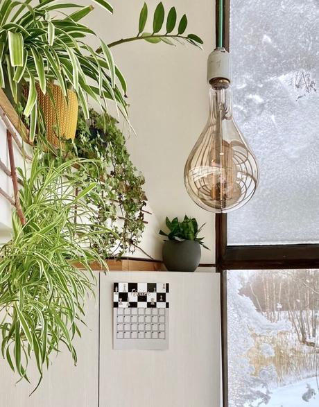 décoration murale mezzanine urban jungle ampoule xxl filament