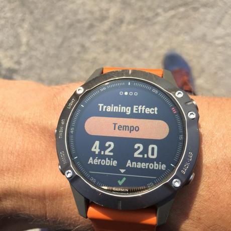 Training effect Garmin