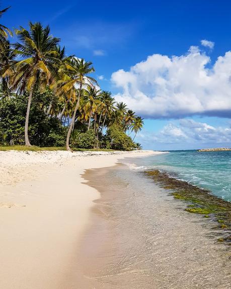 10 jours au paradis en Guadeloupe ! Mon top 7 des activités à faire