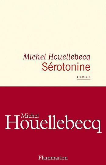 Houellebecq a 65 ans : vivons tristes en attendant la mort !