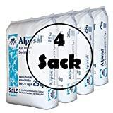 Alposal Sel de piscine 100 kg Sel de piscine, convient pour chlorinateur, électrolyse de sel, sel de piscine