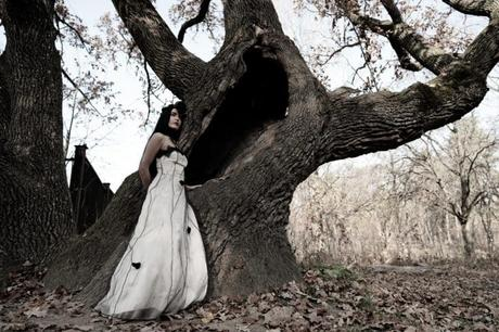 Thème mariage automne : Des photos et vidéo à l'esprit moody