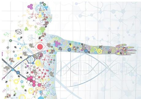 Il est possible de concevoir des protéases qui vont cibler avec une très haute sélectivité des protéines responsables de maladies (Visuel The Liu lab).