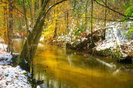 Jura alsacien - Lucelle © French Moments