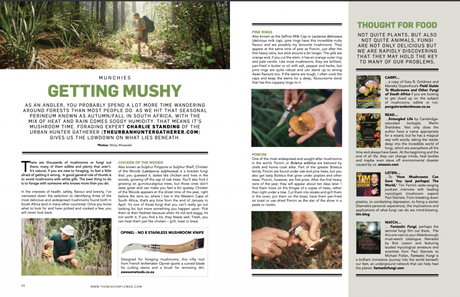 The Mission – The Cult of Fly Fishing – N°26