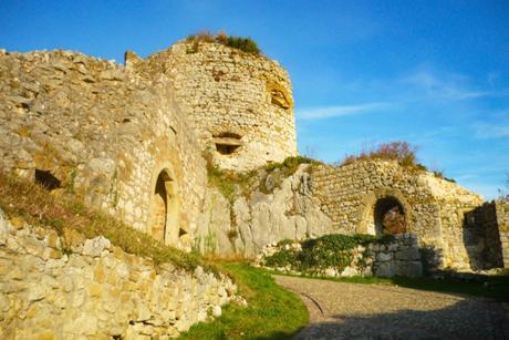Les ruines du Landskron © French Moments