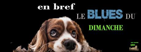 LE BLUES DU DIMANCHE