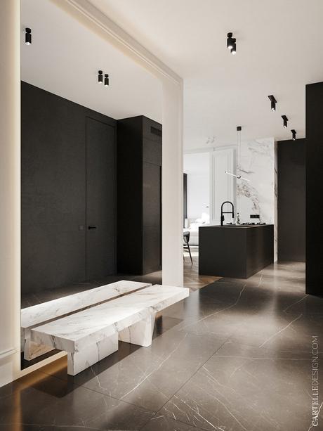 appartement noir blanc bois décoration entrée banc marbre placard mat miroir géant mural
