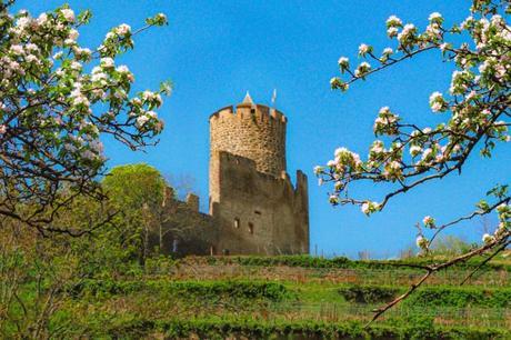 Photos de printemps en Alsace - Kaysersberg © French Moments