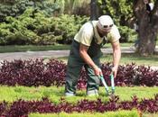 Choisir jardinier conseils astuces