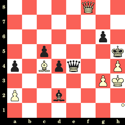 La vie rêvée du joueur d'échecs ou notre façon d'être au monde