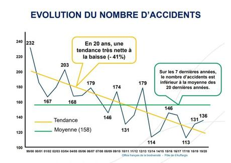 accident-chasse-evolution