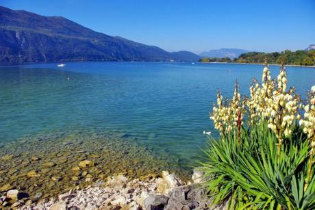 Autour d'Annecy - Le lac du Bourget © French Moments