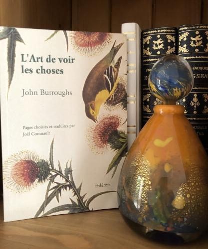 L'art de voir les choses - John Burroughs