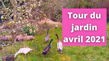 Tour du jardin début avril 2021(vidéo)