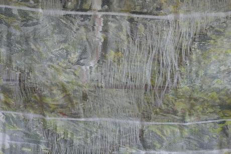 Corps laineux, clito et pages-miroirs