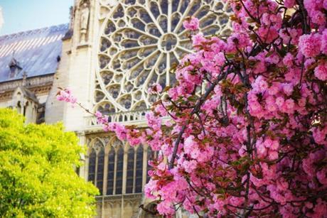 Printemps à Paris © French Moments