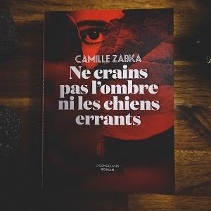 Ne crains pas l'ombre ni les chiens errants de Camille Zabka (éditions L'iconoclaste)