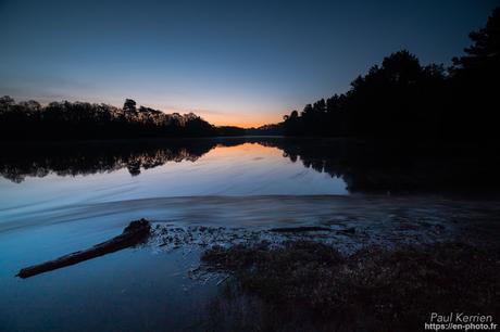filés de feuilles et goémon à l'aube sur L'Odet à Gouesnac'h Finistère Bretagne