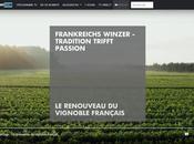 renouveau vignoble français guerre clones.