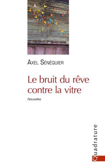 Le bruit du rêve contre la vitre, d'Alex Sénéquier