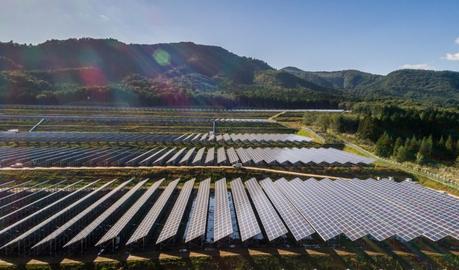 Ferme Solaire Japon_Bouygues Construction